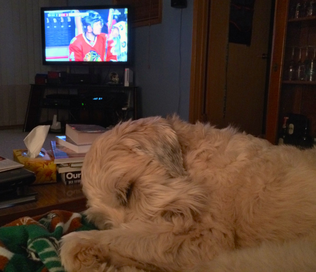 Chloe the Dog watches triple overtime
